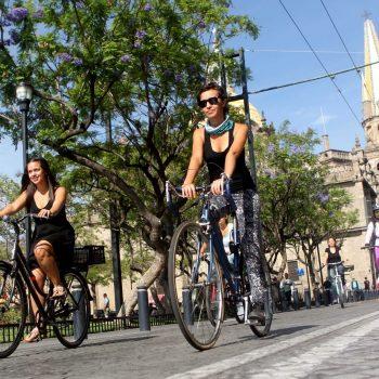 Bicicletas Moma de Paseo
